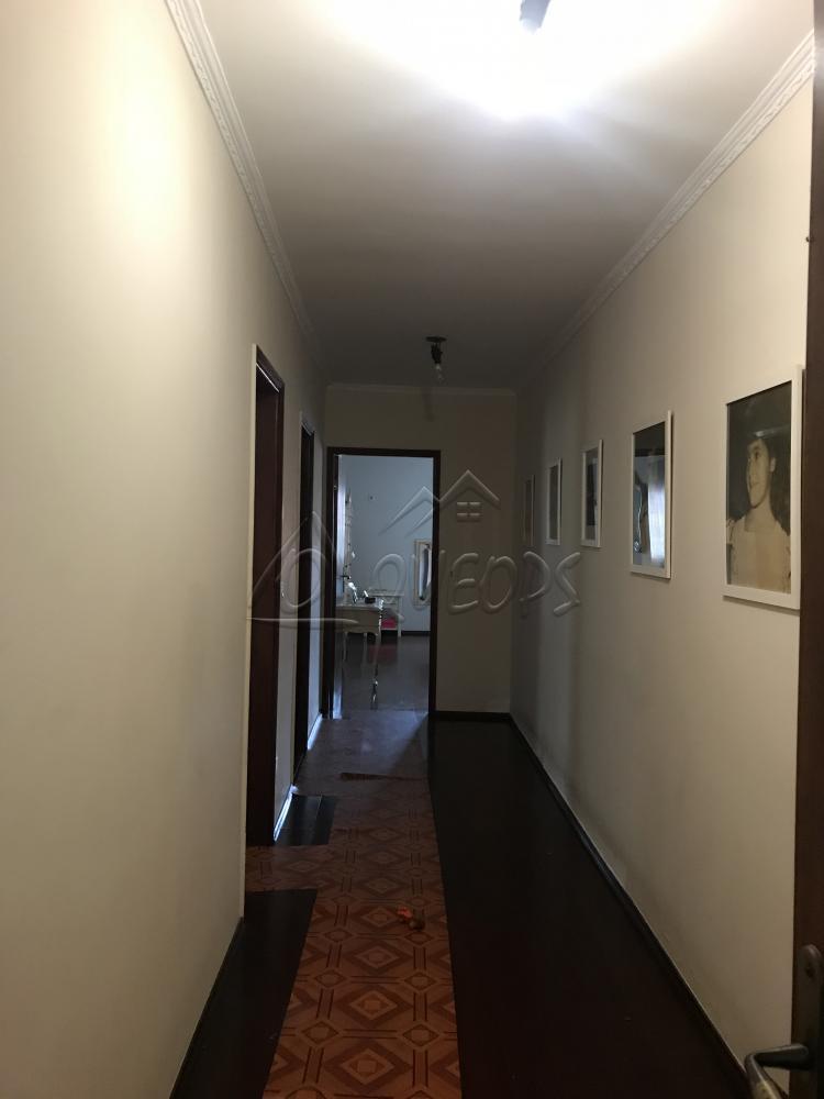 Comprar Casa / Padrão em Barretos apenas R$ 600.000,00 - Foto 15