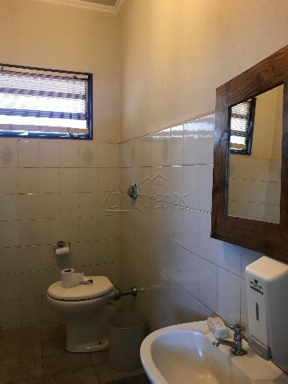 Alugar Comercial / Prédio em Barretos apenas R$ 15.000,00 - Foto 17