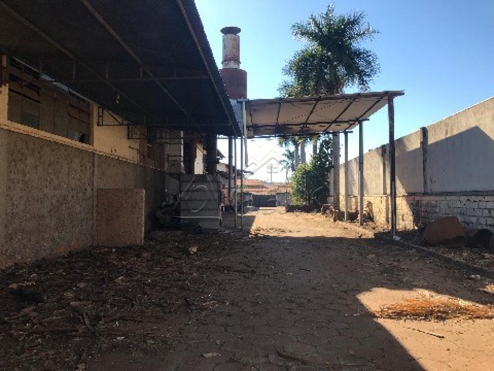 Alugar Comercial / Prédio em Barretos apenas R$ 15.000,00 - Foto 20