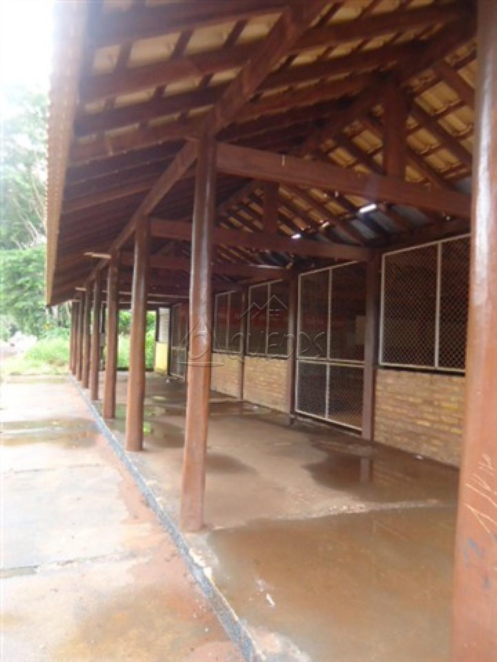 Alugar Comercial / Barracão em Alberto Moreira (Barretos) R$ 2.000,00 - Foto 2