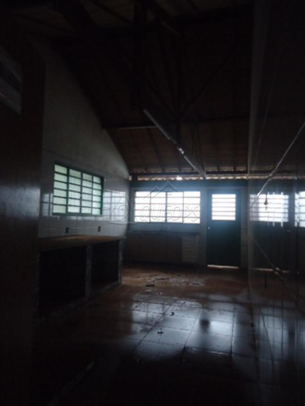 Alugar Comercial / Barracão em Alberto Moreira (Barretos) R$ 2.000,00 - Foto 8