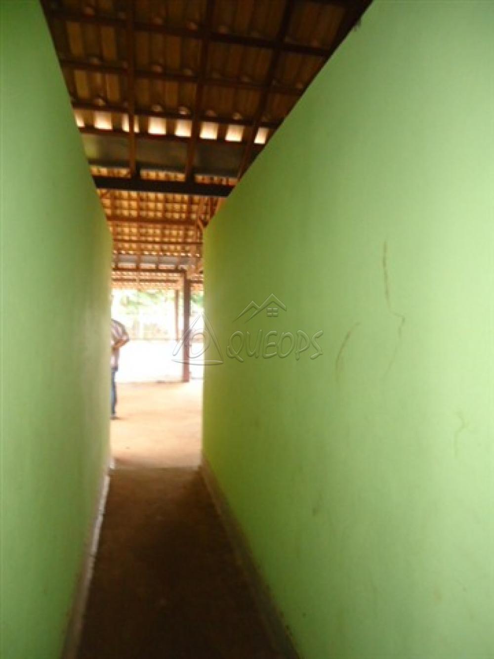 Alugar Comercial / Barracão em Alberto Moreira (Barretos) R$ 2.000,00 - Foto 22
