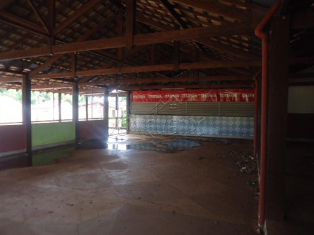 Alugar Comercial / Barracão em Alberto Moreira (Barretos) R$ 2.000,00 - Foto 23