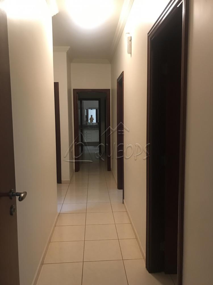 Alugar Casa / Padrão em Barretos apenas R$ 3.700,00 - Foto 6