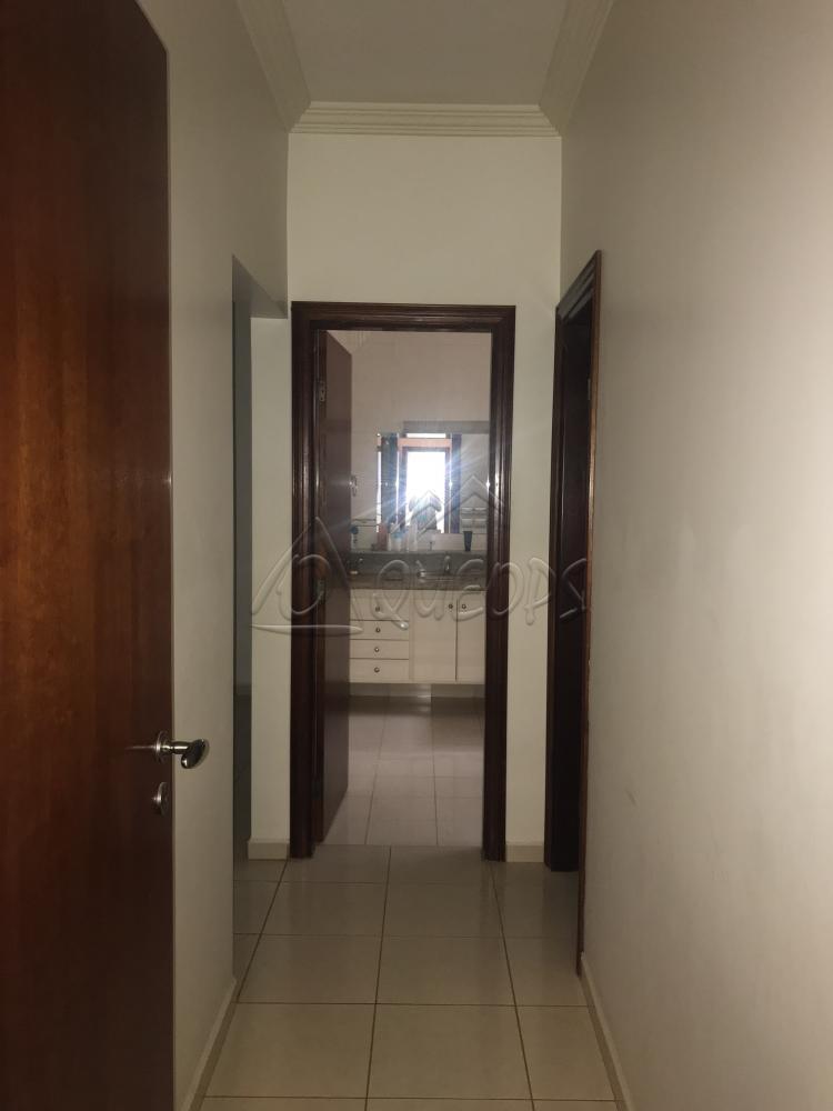 Alugar Casa / Padrão em Barretos apenas R$ 3.700,00 - Foto 7