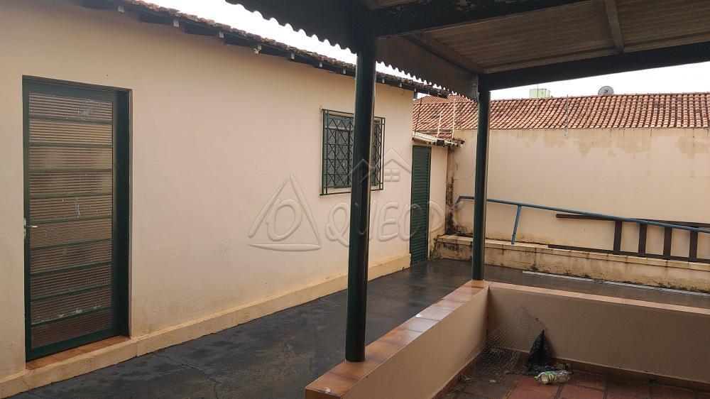 Comprar Casa / Padrão em Barretos apenas R$ 420.000,00 - Foto 11