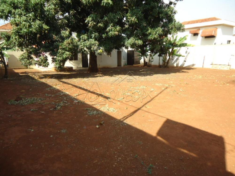 Alugar Casa / Padrão em Barretos apenas R$ 5.000,00 - Foto 11