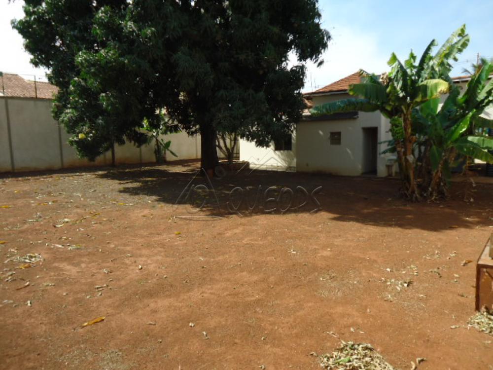 Alugar Casa / Padrão em Barretos apenas R$ 5.000,00 - Foto 12