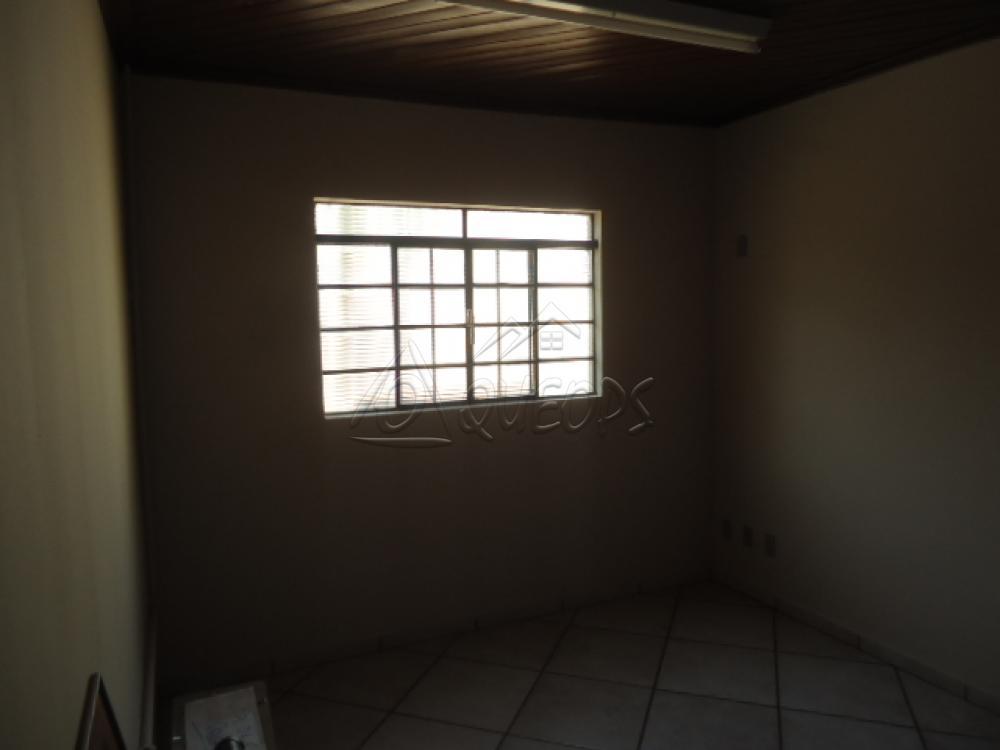 Alugar Casa / Padrão em Barretos apenas R$ 5.000,00 - Foto 16