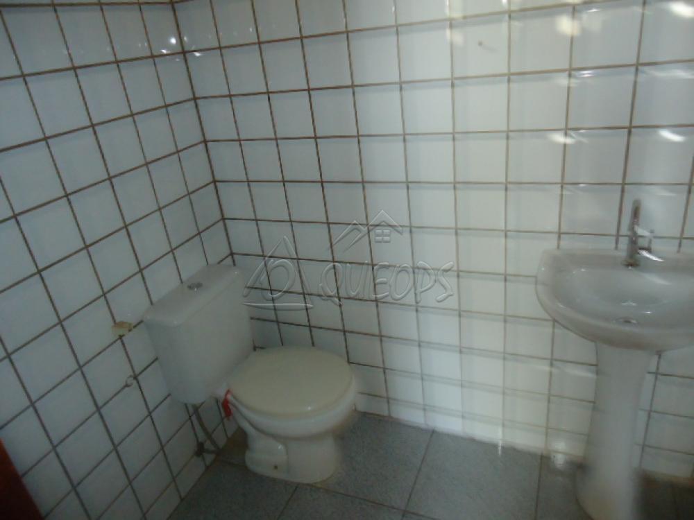 Alugar Casa / Padrão em Barretos apenas R$ 5.000,00 - Foto 17