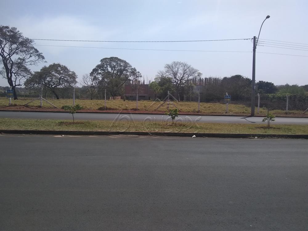 Comprar Terreno / Padrão em Barretos apenas R$ 700.000,00 - Foto 1