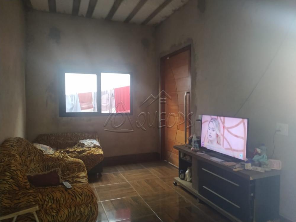 Comprar Casa / Padrão em Barretos apenas R$ 280.000,00 - Foto 11