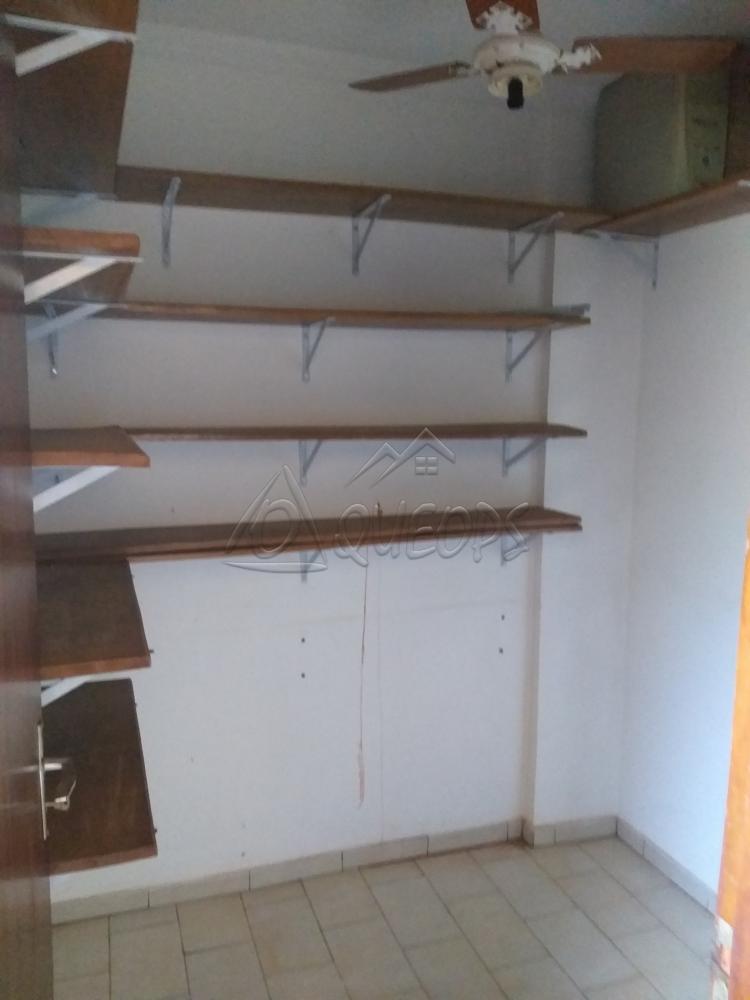 Alugar Apartamento / Padrão em Barretos apenas R$ 1.300,00 - Foto 15