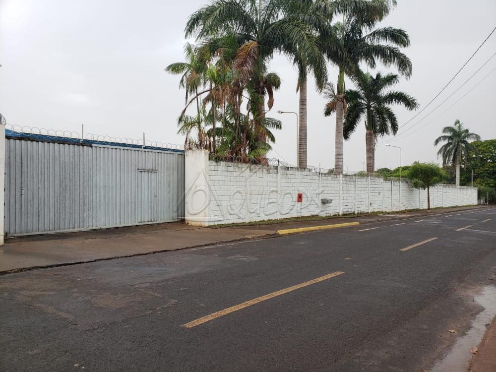 Comprar Comercial / Barracão em Barretos apenas R$ 3.500.000,00 - Foto 1