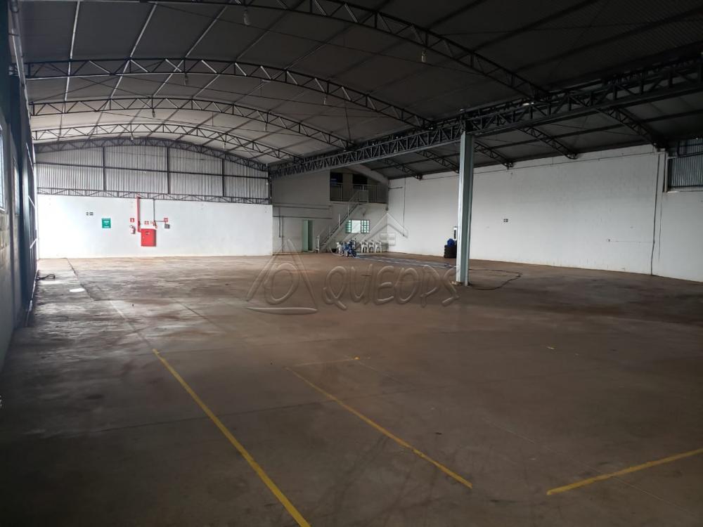 Comprar Comercial / Barracão em Barretos apenas R$ 3.500.000,00 - Foto 6