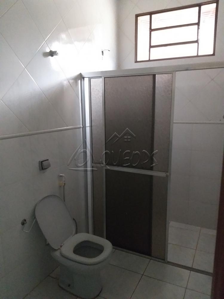 Alugar Casa / Padrão em Barretos apenas R$ 3.000,00 - Foto 13