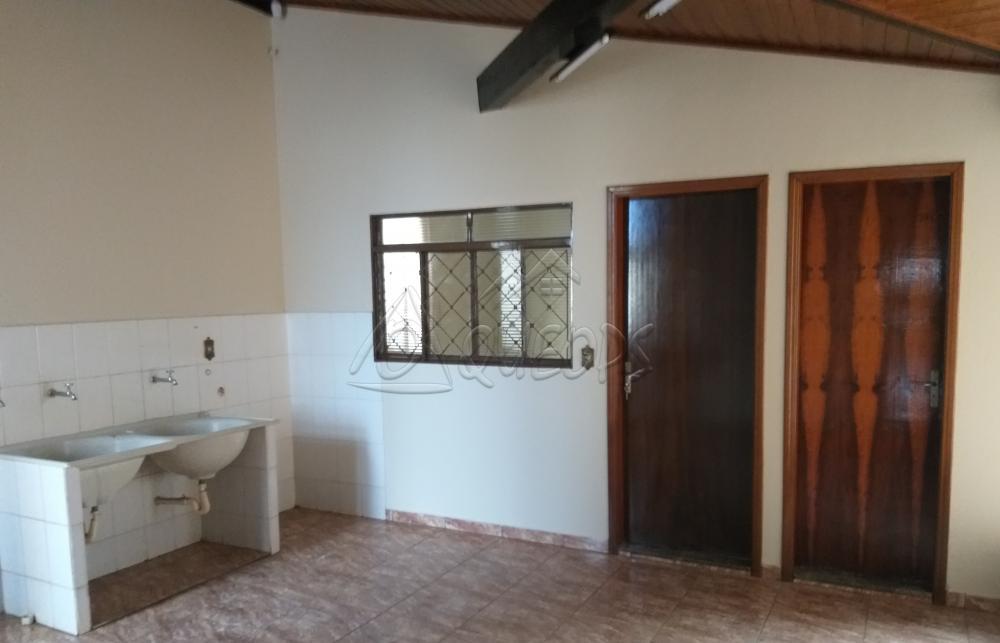 Alugar Casa / Padrão em Barretos apenas R$ 3.000,00 - Foto 14
