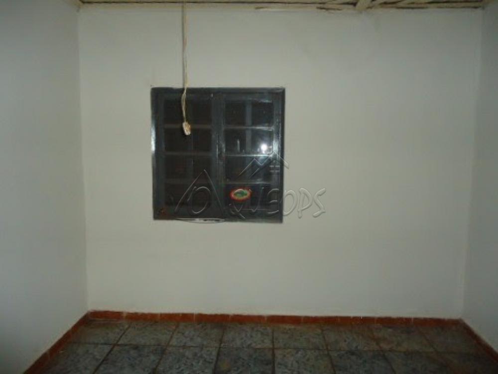 Alugar Casa / Padrão em Barretos apenas R$ 600,00 - Foto 12