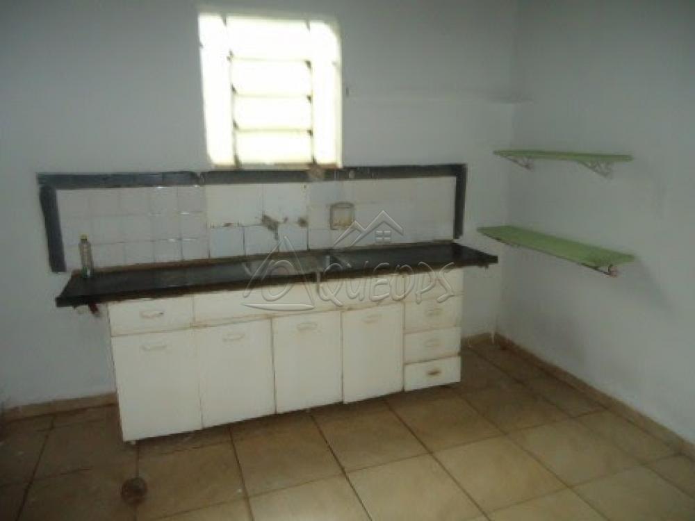 Alugar Casa / Padrão em Barretos apenas R$ 600,00 - Foto 13