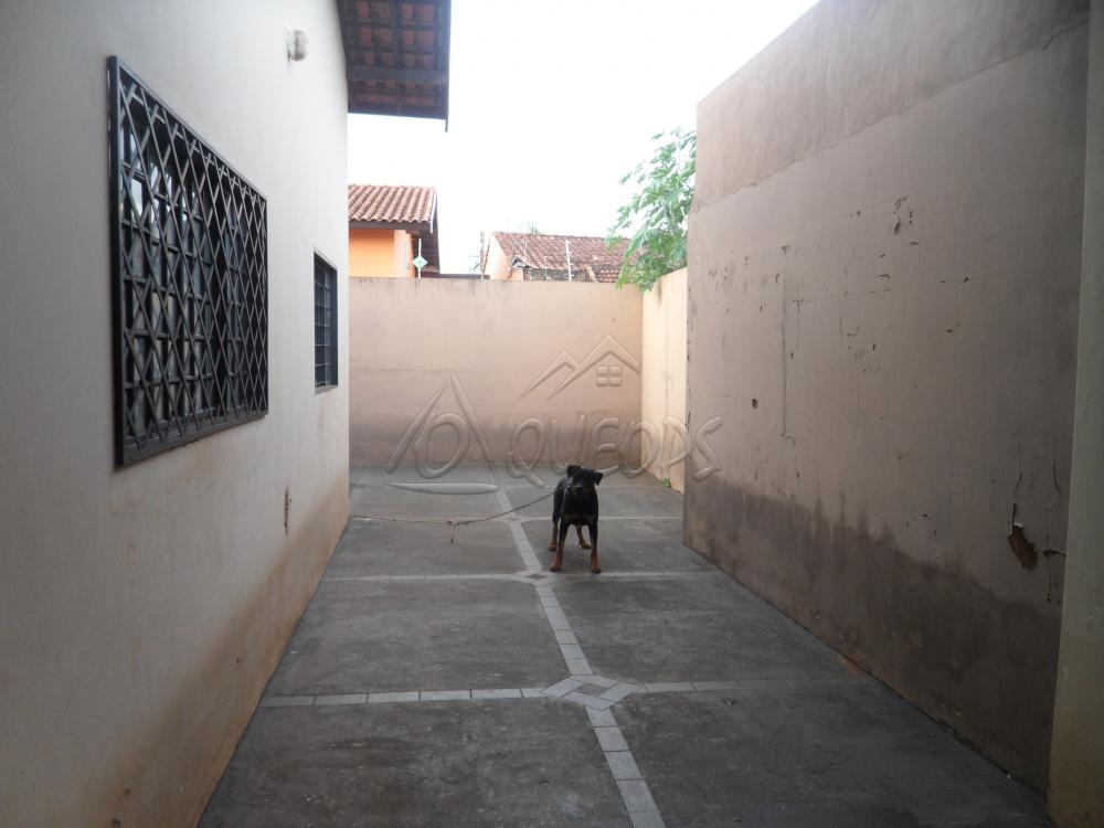 Comprar Casa / Padrão em Barretos R$ 260.000,00 - Foto 3