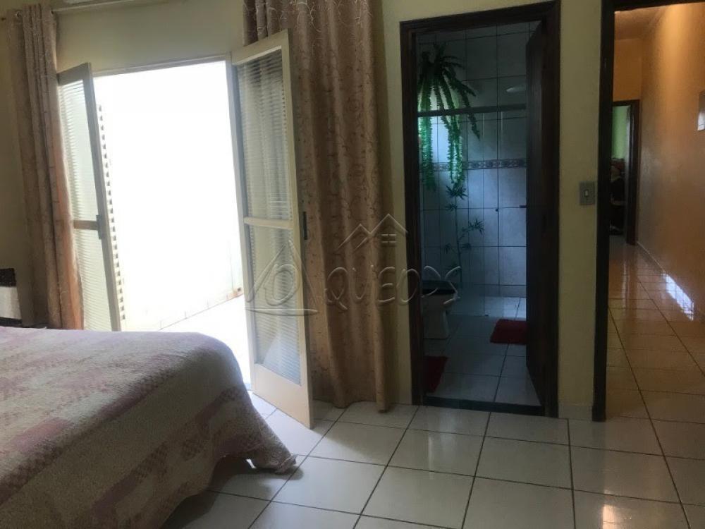 Comprar Casa / Padrão em Barretos apenas R$ 390.000,00 - Foto 6