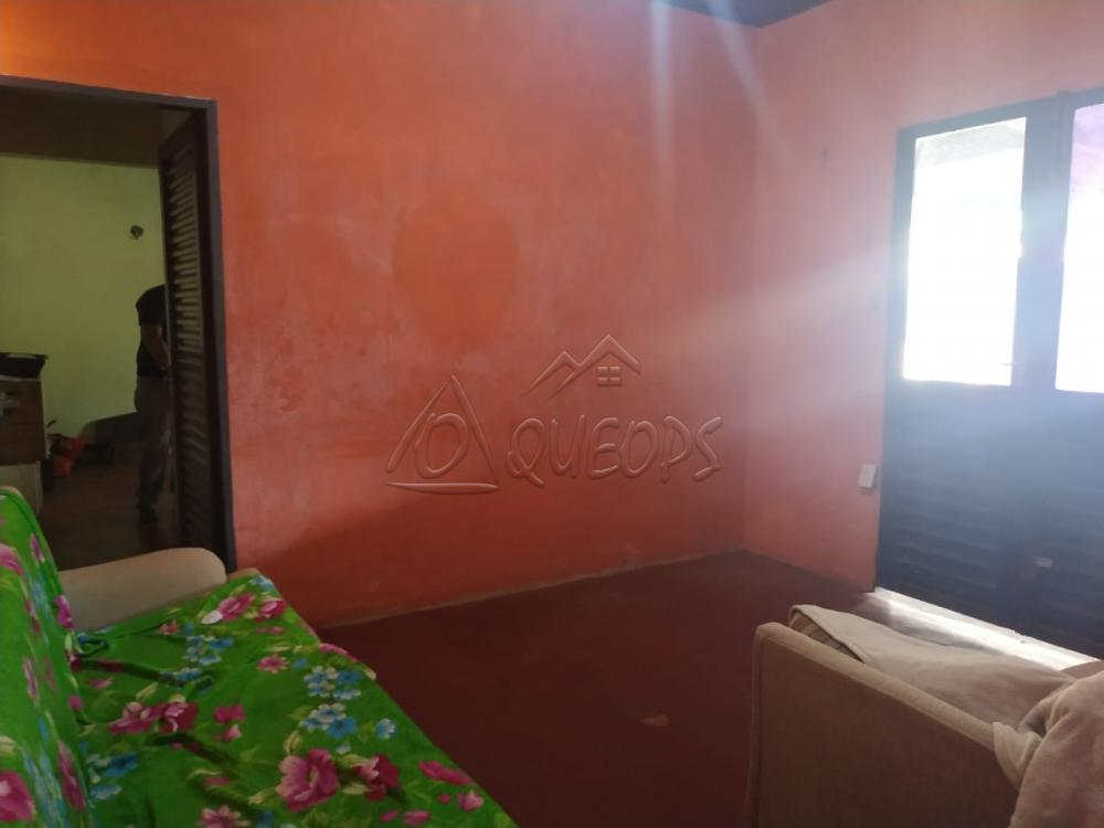Comprar Casa / Padrão em Barretos apenas R$ 300.000,00 - Foto 7