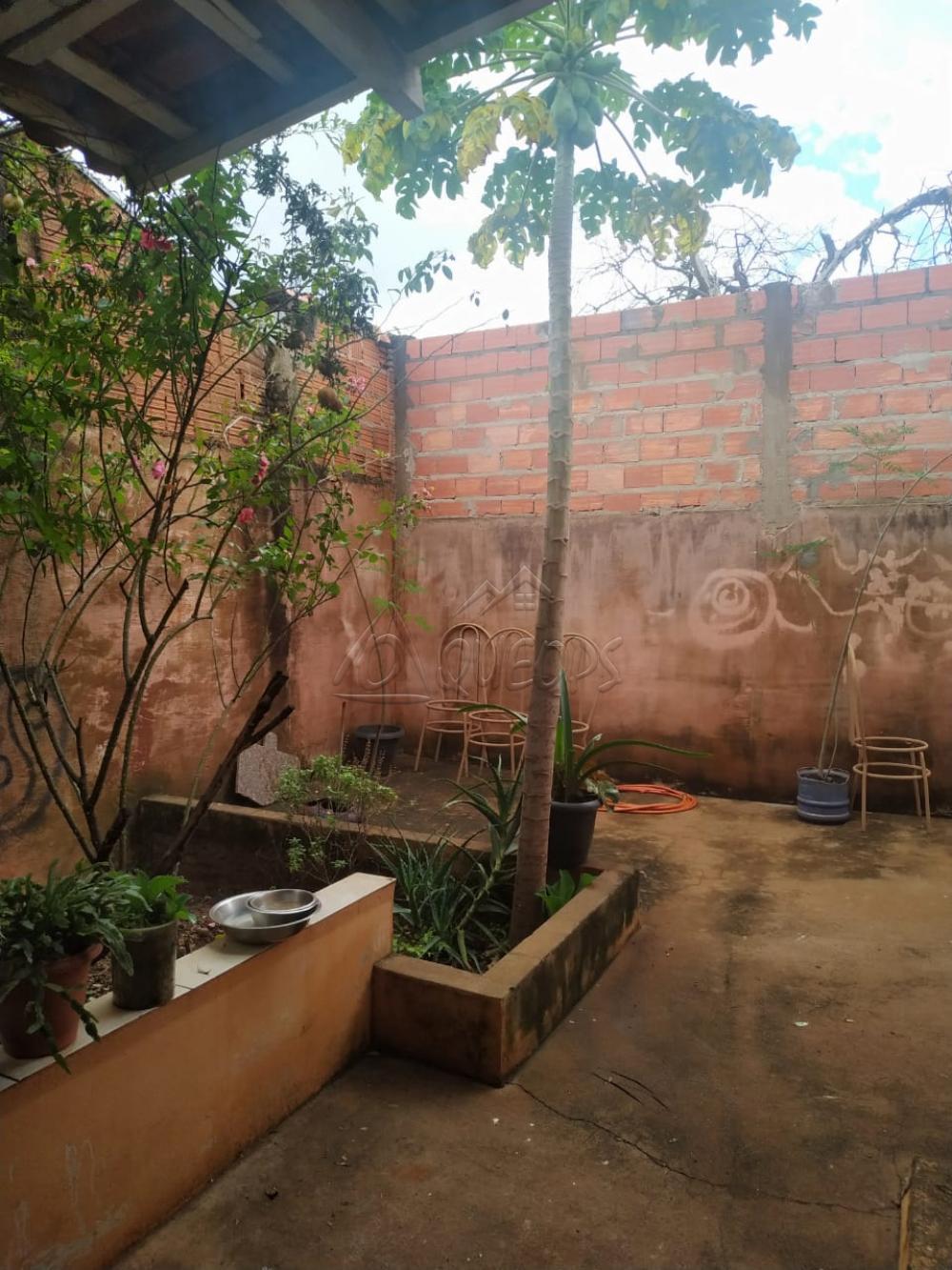 Comprar Casa / Padrão em Barretos apenas R$ 130.000,00 - Foto 13