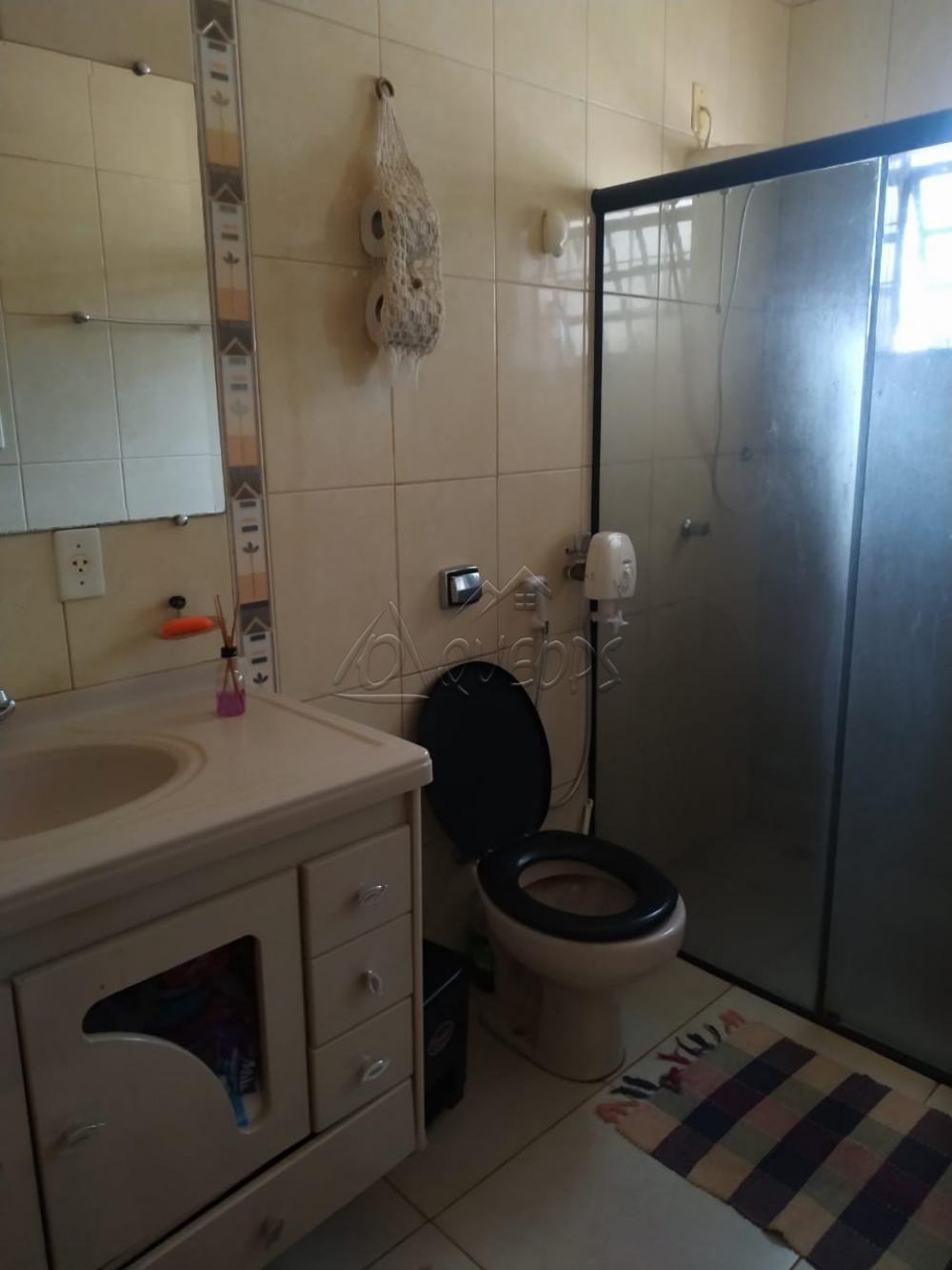Comprar Casa / Padrão em Barretos apenas R$ 270.000,00 - Foto 15