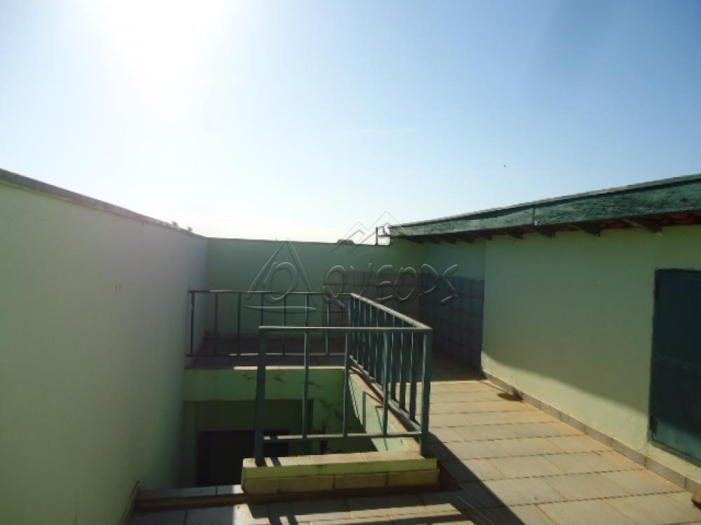 Alugar Casa / Sobrado em Barretos apenas R$ 1.100,00 - Foto 12