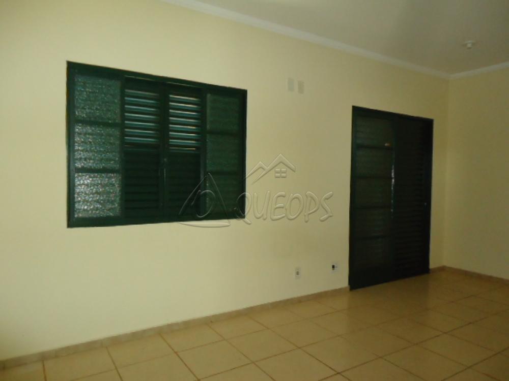 Alugar Casa / Sobrado em Barretos apenas R$ 1.100,00 - Foto 9