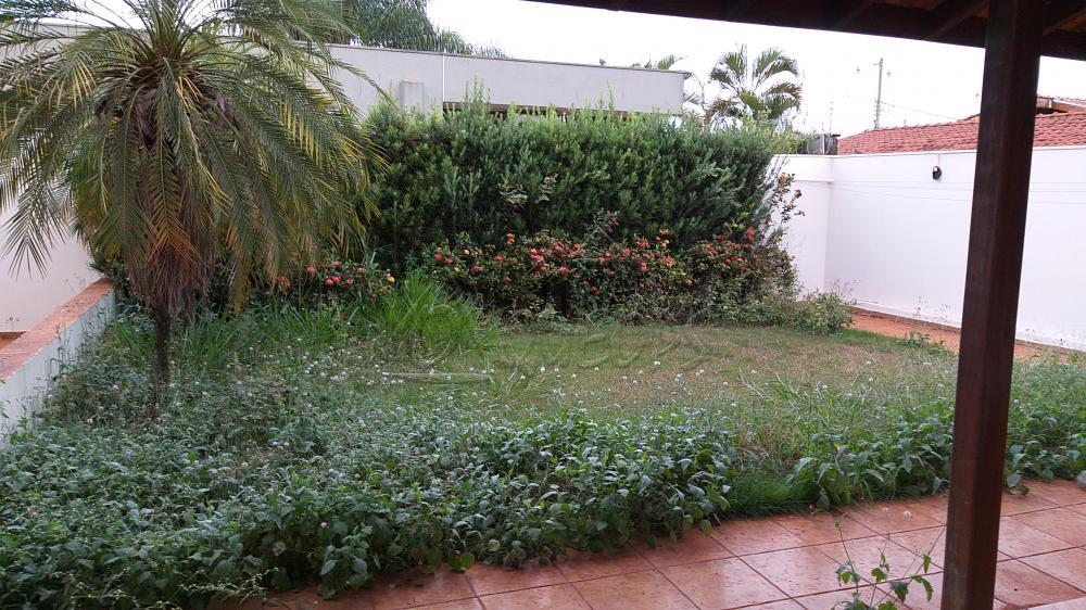 Alugar Casa / Padrão em Barretos apenas R$ 1.800,00 - Foto 16