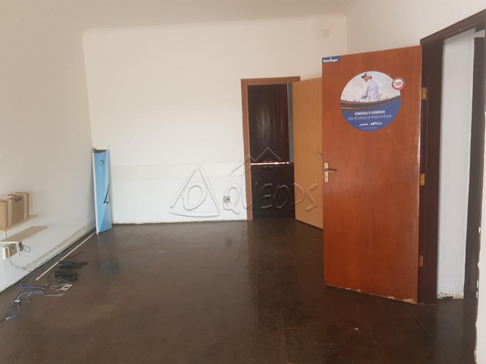 Alugar Comercial / Barracão em Barretos R$ 3.850,00 - Foto 3