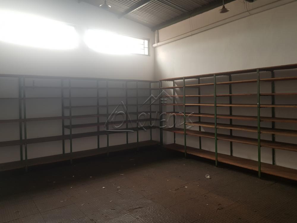 Alugar Comercial / Barracão em Barretos R$ 3.850,00 - Foto 5