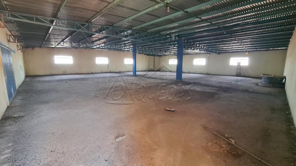 Alugar Comercial / Salão em Barretos R$ 4.500,00 - Foto 16