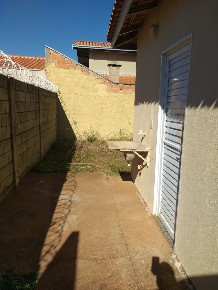 Alugar Casa / Padrão em Barretos apenas R$ 700,00 - Foto 10