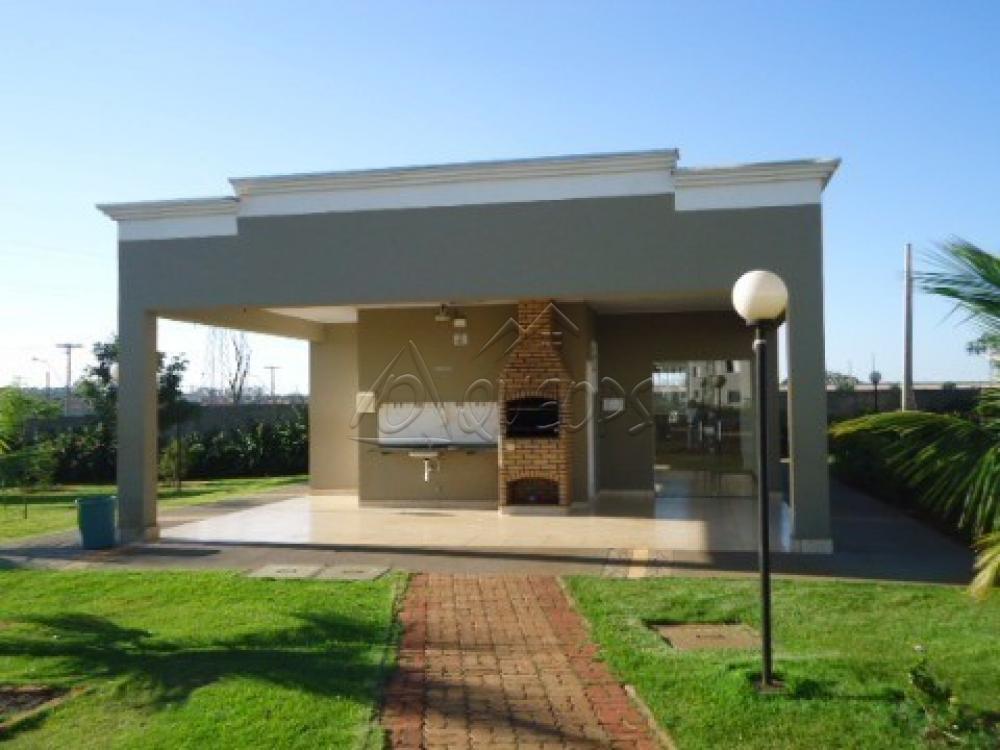 Alugar Apartamento / Padrão em Barretos R$ 700,00 - Foto 16