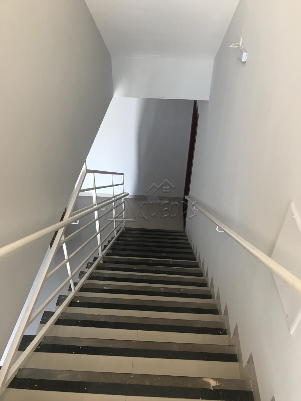 Alugar Apartamento / Padrão em Barretos apenas R$ 1.800,00 - Foto 20