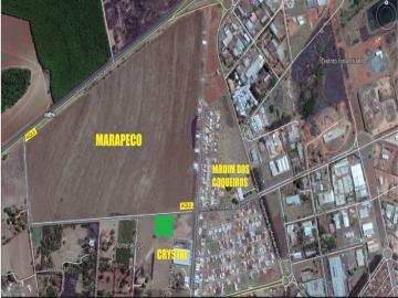 Barretos Monte Alegre Terreno Venda R$2.500.000,00  Area do terreno 10000.00m2