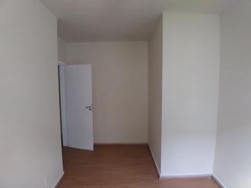 Alugar Apartamento / Padrão em Barretos R$ 700,00 - Foto 10